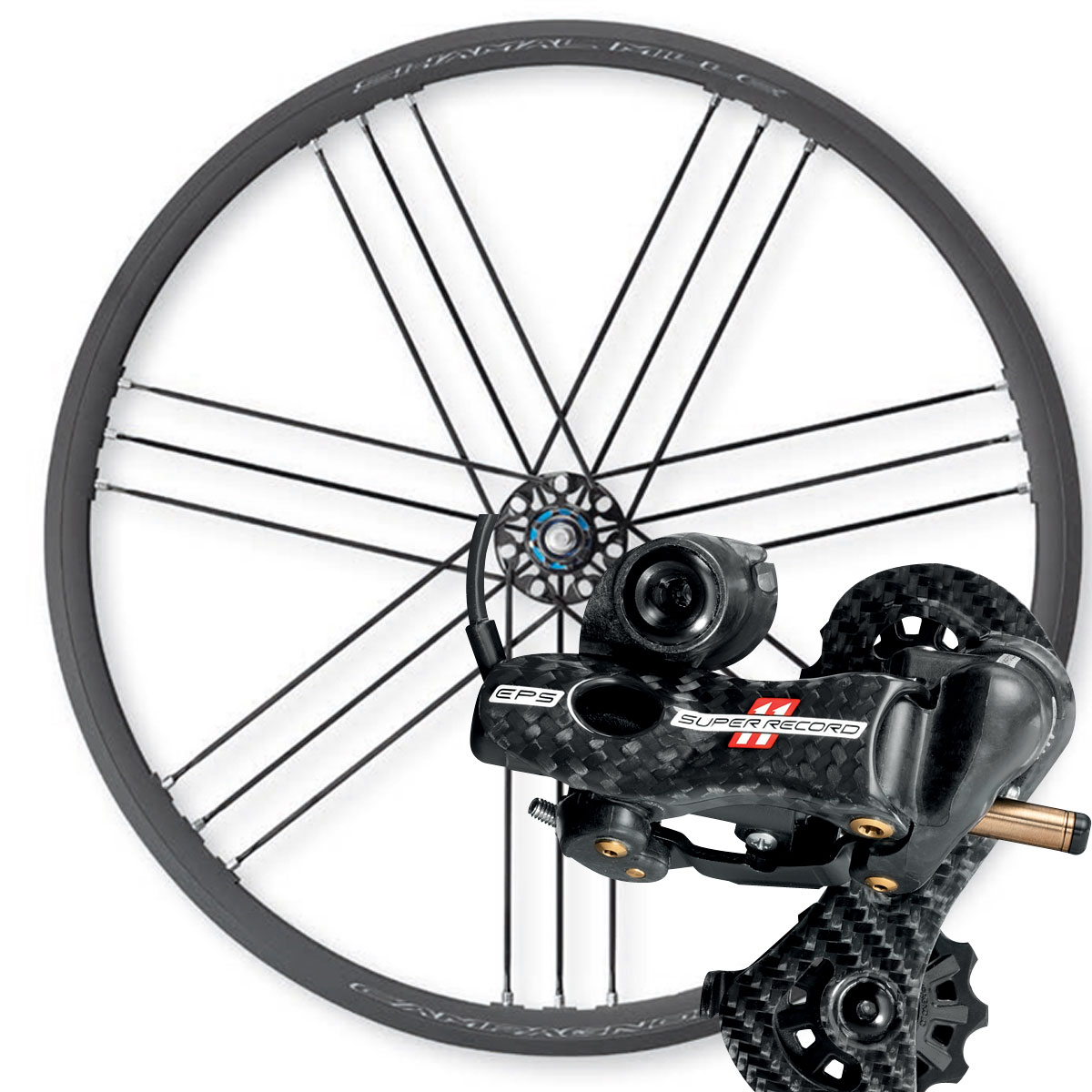 Campagnolo Shamal Mille mit Record EPS V3